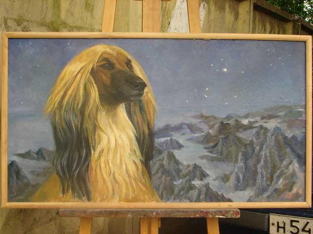 Созвездие Большого пса, 50х100, орг./м